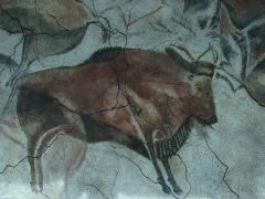 Cave Painting Of Bison